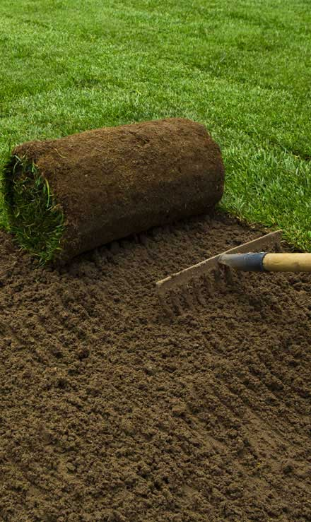 E & E Contractors LLC Sod Installation