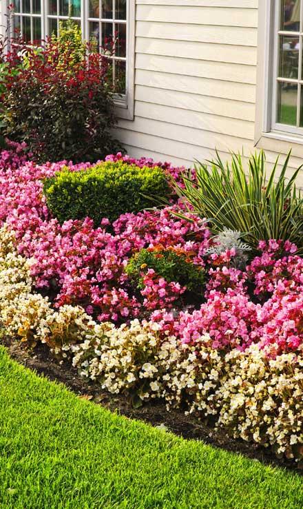 E & E Contractors LLC Garden Design